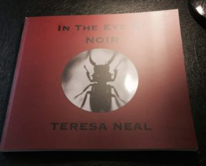 In The Eye Of Noir black and white photography book. Teresa Neal photographer